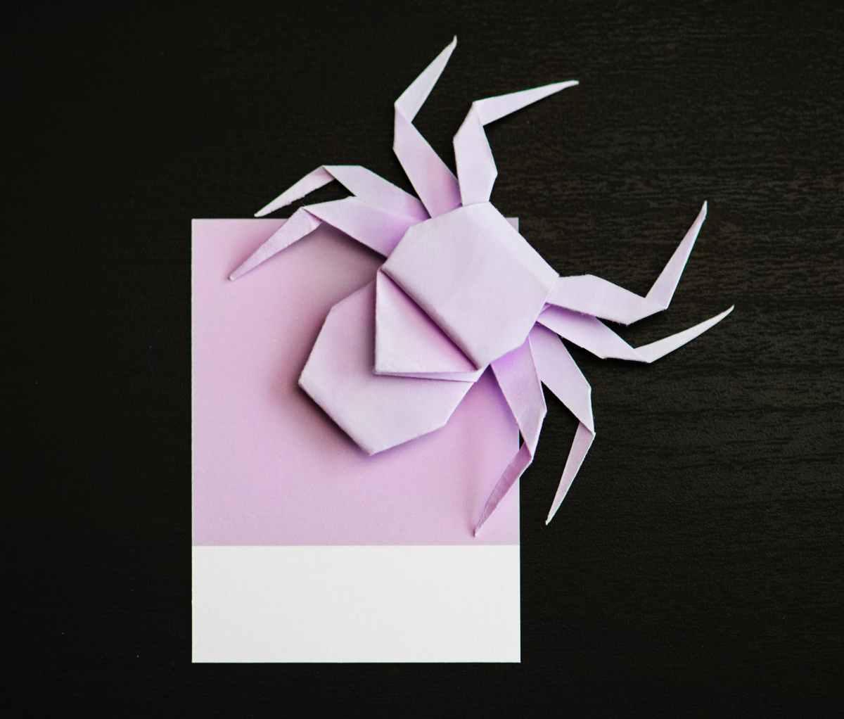 spider origami.jpeg