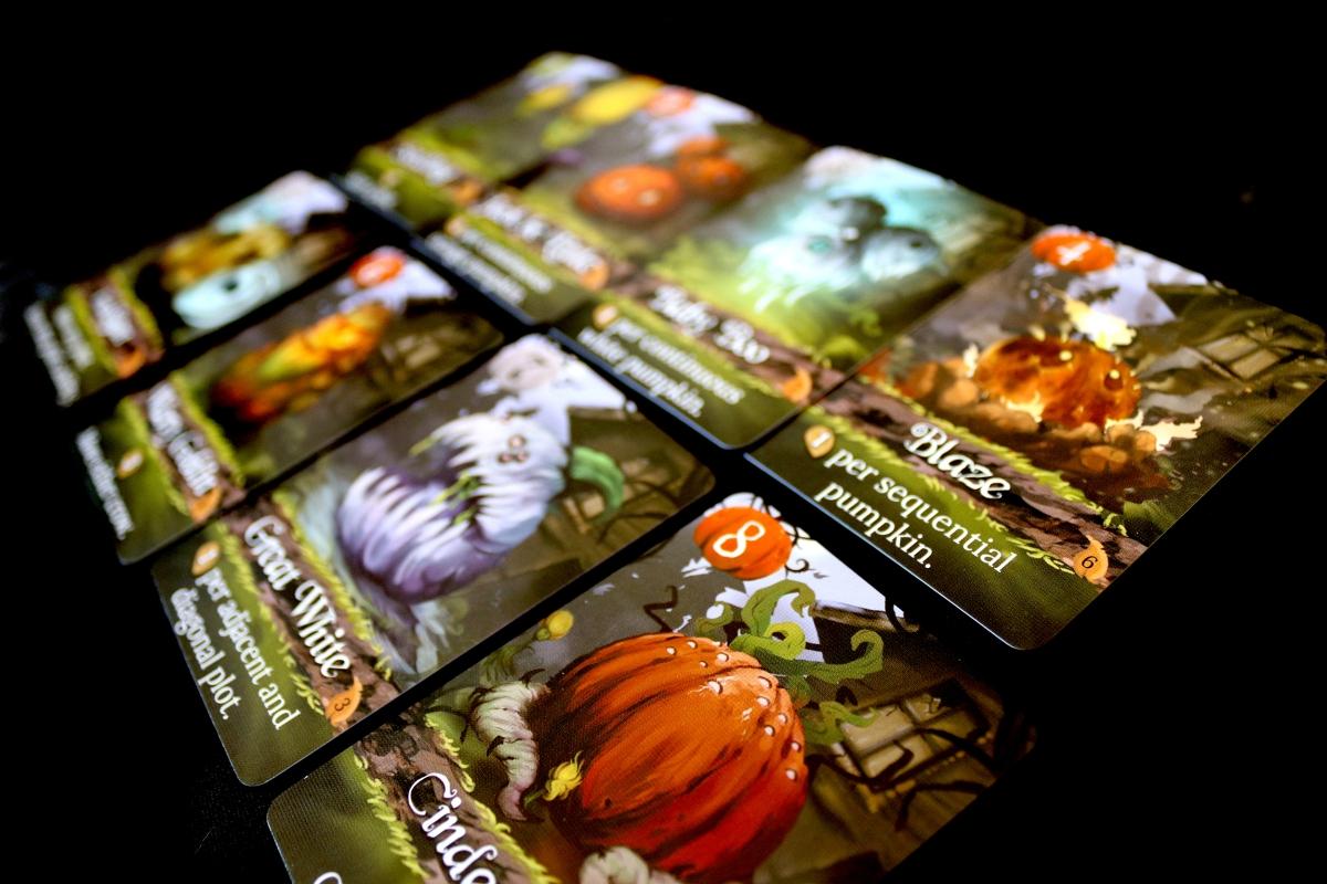 pumpkin-pumpkinss
