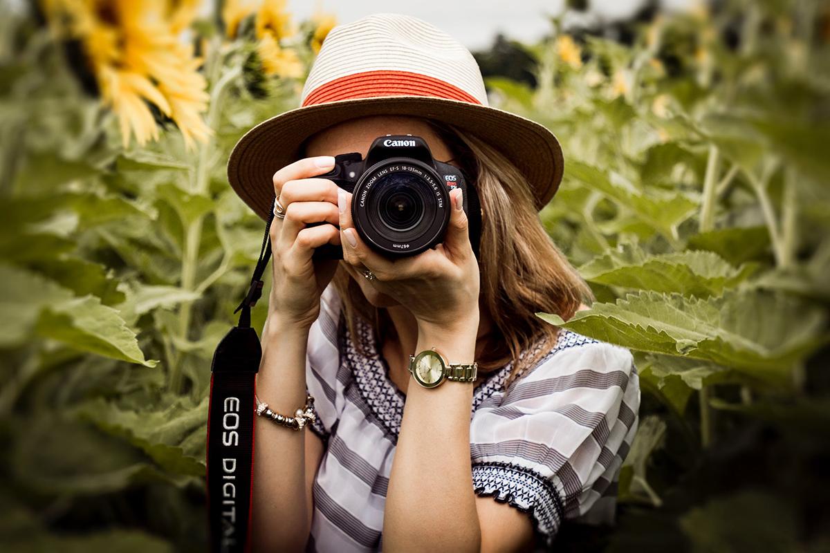pexels-photo-1264210